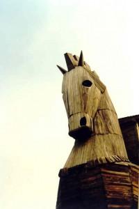 cavallotroia1
